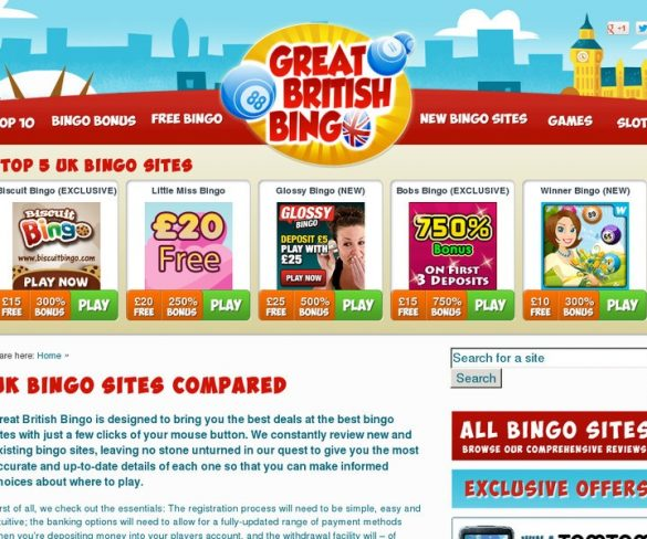 Read All Of The Reviews Carefully to understand about Best Payout Bingo Sites